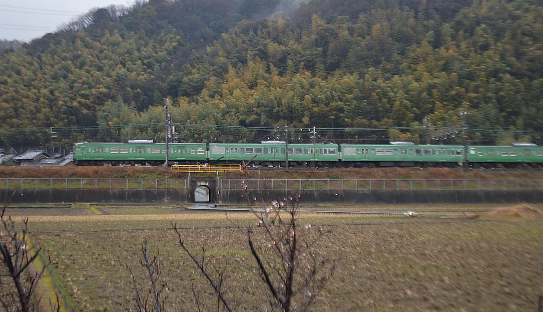 DSC_4461s.jpg