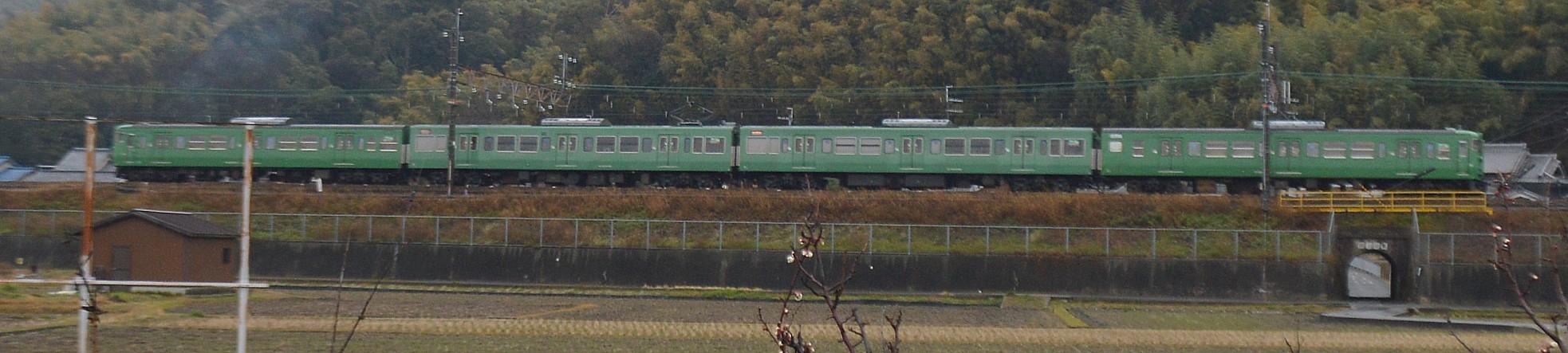 DSC_4463s.jpg