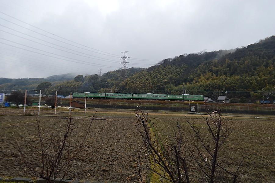 DSC_4463v.jpg