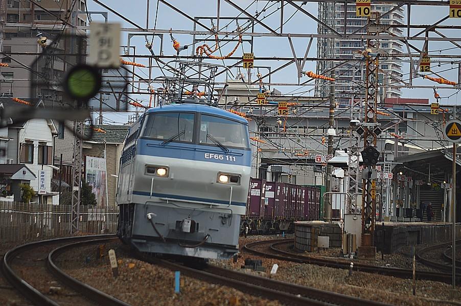 DSC_4583v.jpg