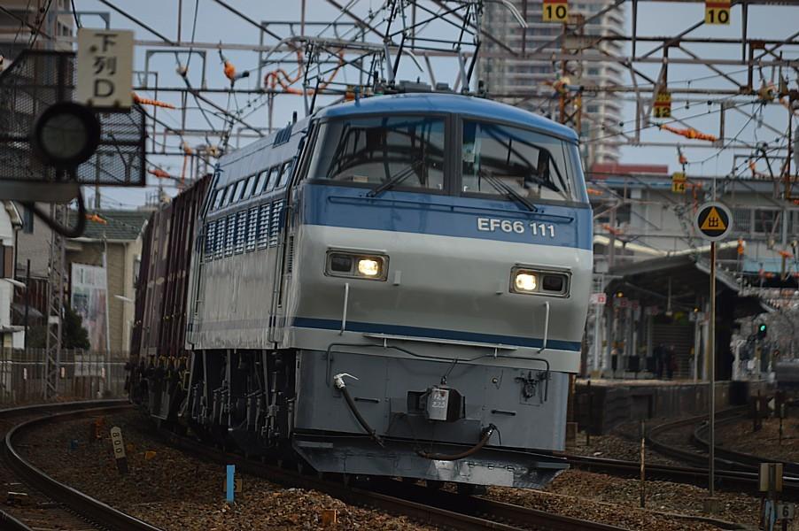 DSC_4584v.jpg