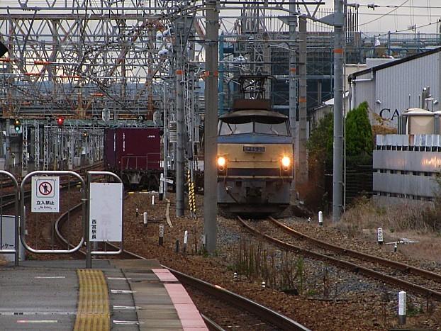 IMG_8622v.jpg