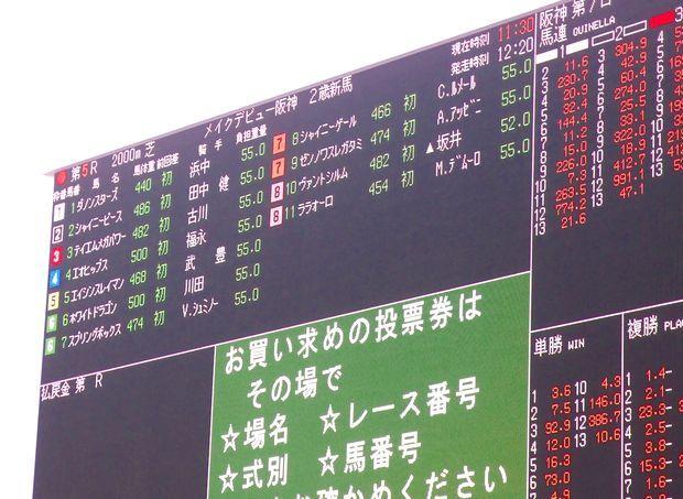 阪神競馬場20161223②