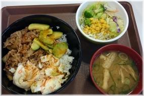 161105J 101アボカド牛丼セット32