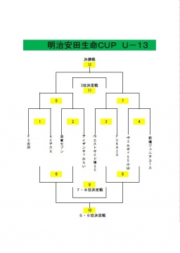 安田生命CUP