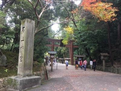 20161123近鉄_06 - 9