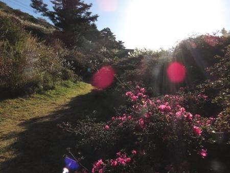紅葉雲仙岳 086