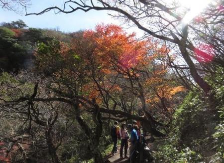 紅葉雲仙岳 241
