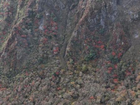 紅葉雲仙岳 351