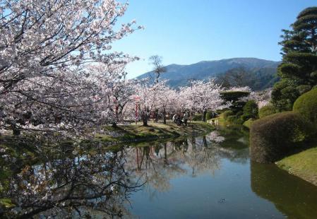 桜天山・小城公園2011040618033750ds