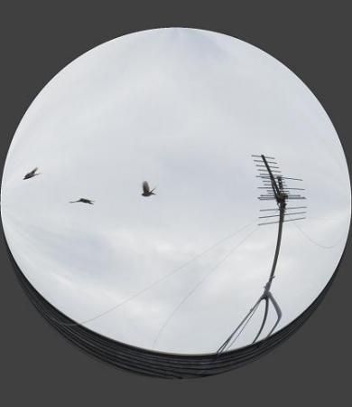 3羽の雀 002