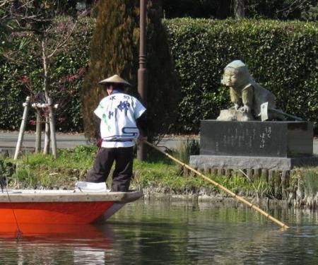 大沢ハマシギ・川下り待ちぼうけ 232