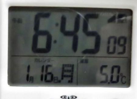 大沢ハマシギ・川下り待ちぼうけ 001