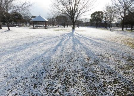 雪公園の 030