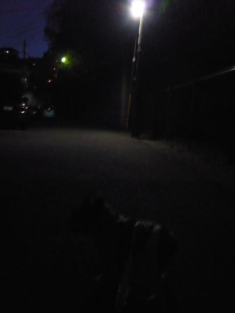まだ暗いぜ