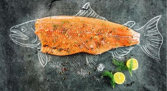 オーガニック鮭とふつうの養殖鮭