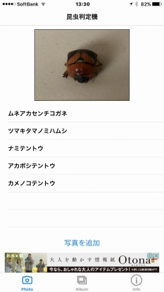 IMG_6885_20161220141936bcb.jpg