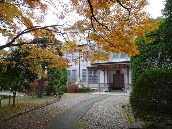 20161123佐倉ふるさと公園 (4)