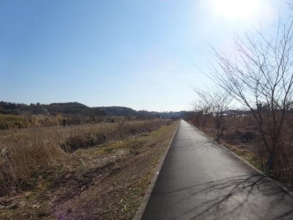 20170128秋元牧場と幕張 (3)