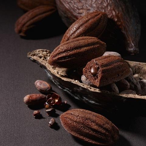 terrasaison_cacaocake01.jpg