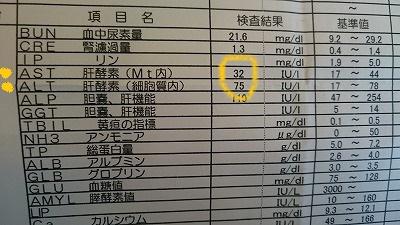 2DSC_0007.jpg
