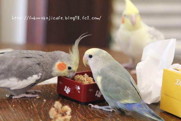 仲良しご飯1 - コピー