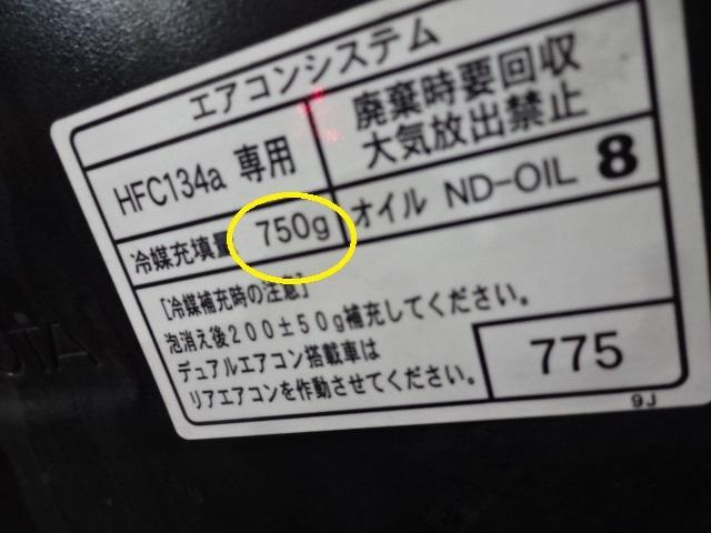 DSC09481.jpg