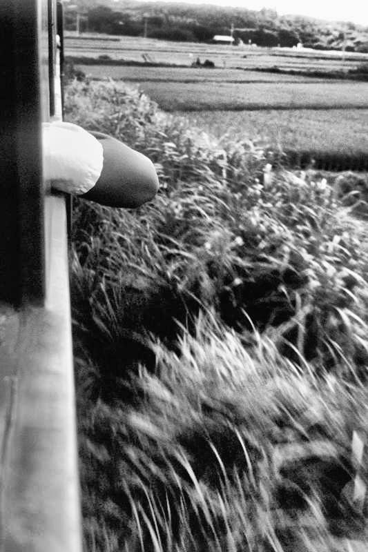 鹿児島交通 窓  1982年8月 16bitAdobeRGB原版 take1b2