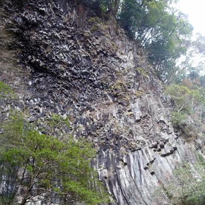河津七滝 釜滝の柱状節理の壁