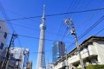 japan170130.jpg