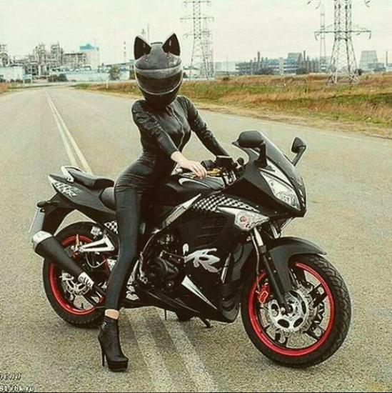 neko_helmet_20161206_005-thumb-600x601-626843.jpg