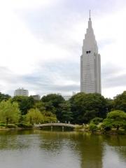 新宿御苑 (1)