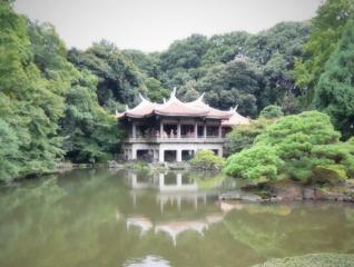 新宿御苑 (3)