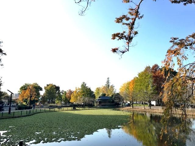 水城公園 (8)