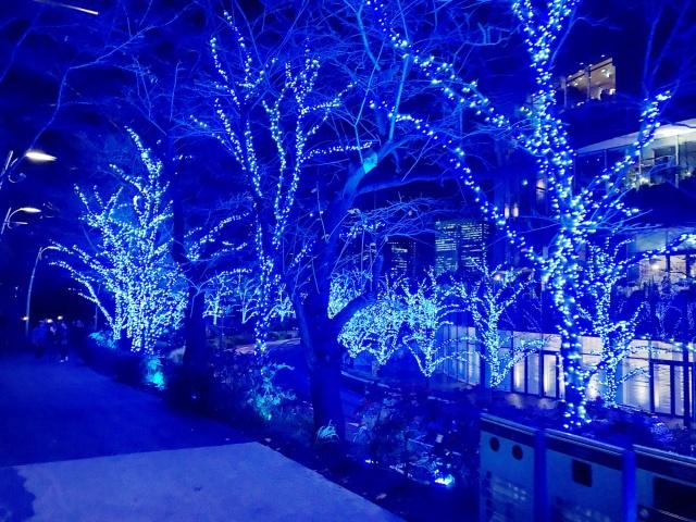 東京ミッドタウン (4)
