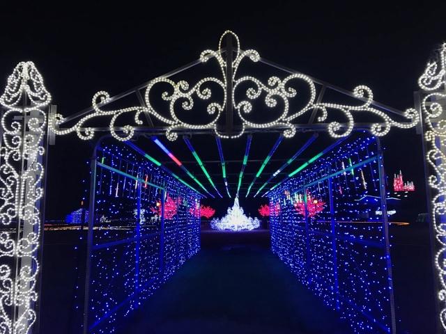 太田市北部運動公園 (8)