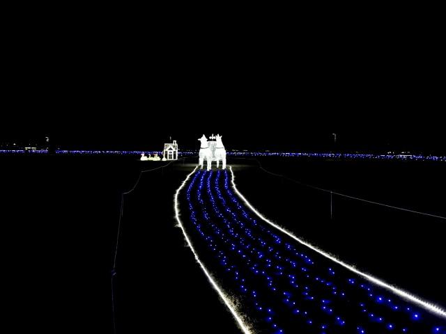太田市北部運動公園 (15)