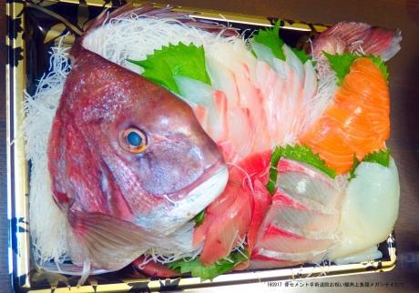 170103 鯛の盛り付け