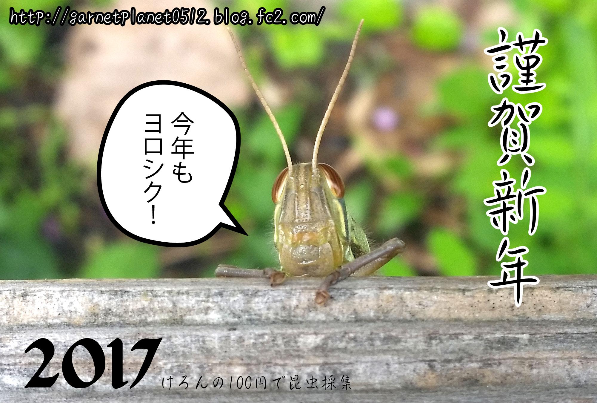 20170102.jpg