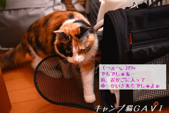 170112_4702.jpg