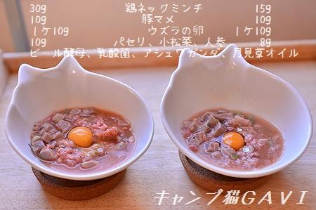 170203_5381.jpg