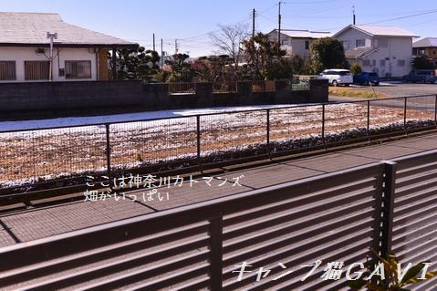 170211_5557.jpg