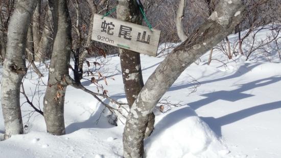 sP1280059.jpg