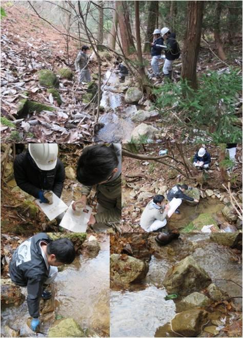 森の通信簿白鳥・川の調査