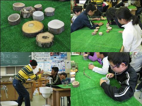 マルヤマグループ木育教室・草木観察