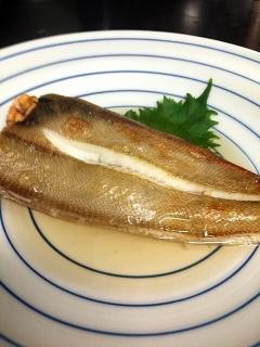 yanagi_karei_20170119.jpg