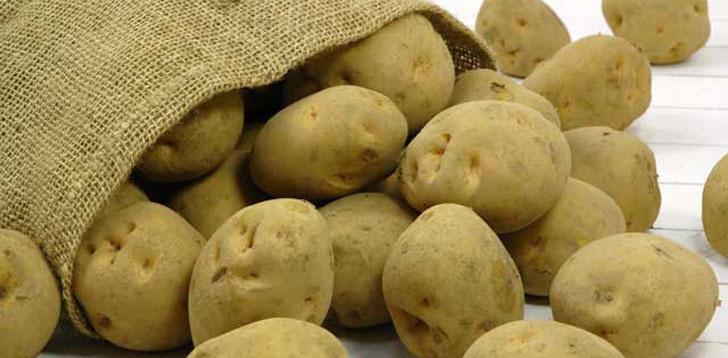 20101222-potato1[1]