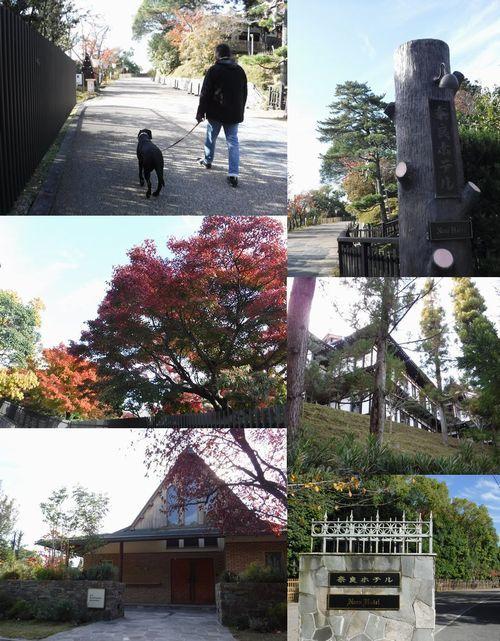 20161116 DSCF2689 奈良ホテル