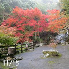 二郎滝の紅葉
