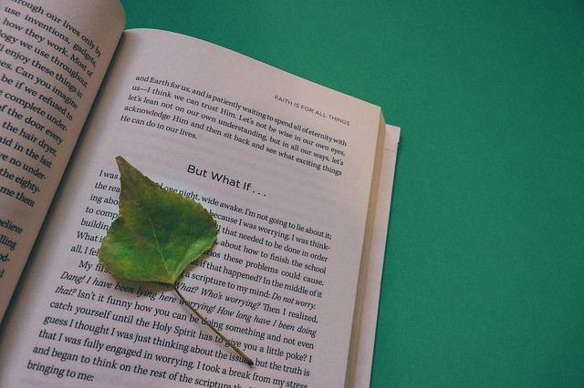book-912727_640.jpg